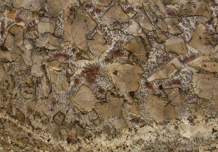 Bellini Granite Slab 30Mm